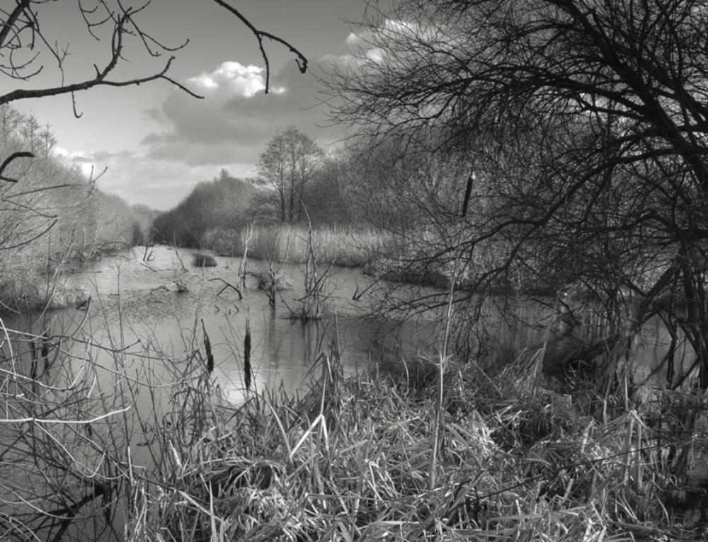 Jon Hall Photography